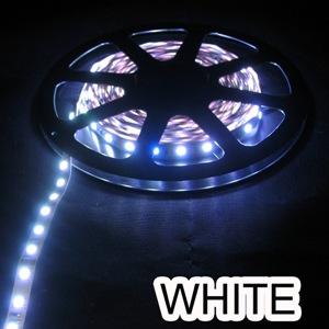 DCLEDCW-I-L-60-10X.5M * LEDBETTER LED COOL WHITE INDOOR LARGE 60/METER 10 X .5M TERMINATED - 12000K